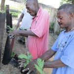 Anderson Pots Helps a Tree Growing Project in Haiti